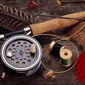 Охотничьи и рыболовные магазины Тавды